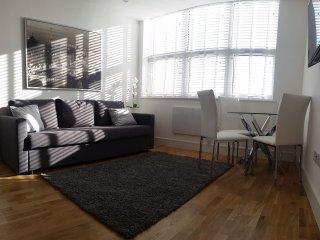 Urban Apartments - Studio Apartment - 5