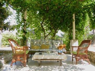 Historic villa with  garden near the beach