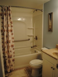Master bath recently renovated provides a shower/tub