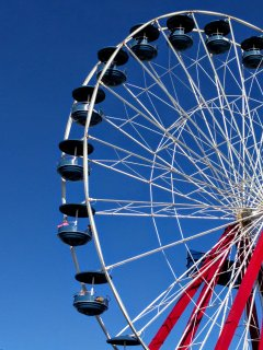 Or enjoy the amusements on the pier. There is something for everyone