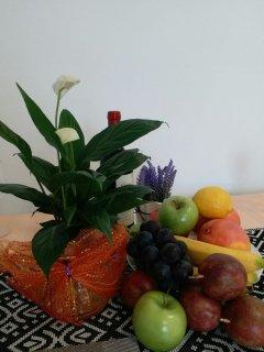 Tempting fruits