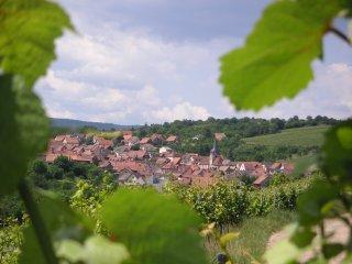 Vue sur le village de F 67560 Rosenwiller où  se situe le gite