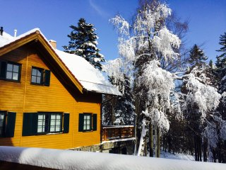 Pension Martin - Deluxe Apartment on Ski Resort III
