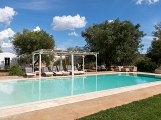 Luxury Villa in olive grove - absolute privacy- air cond - drone tour- concierge