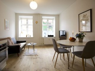 Nice Copenhagen apartment with garden near City