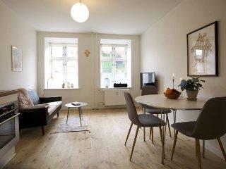 Nice Copenhagen apartment with garden near City