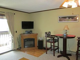 Cozy 1 Bedroom Walking distance to Soaring Eagle LIft