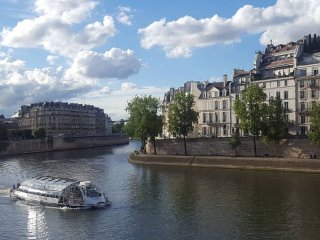 Luxury Flat on the Seine, Heart of Paris