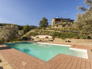 Villa Margarita -  Large  Family Villa  - Tuscan Villa  with pool and privacy