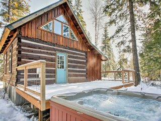 NEW! Rustic 1BR Log Cabin w/Hot Tub & Wooded Views