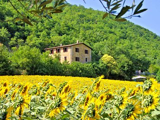 Farmhouse Apartments with Pool in Quiet Rural Setting - Pietramelina