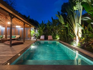 New wooden villa 2 bedrooms in Canggu.