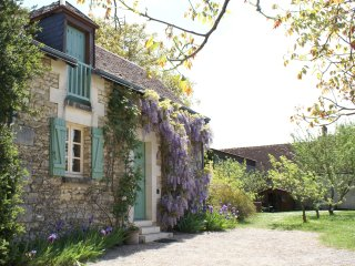 Loire Valley romantic secluded cottage for 2 near vineyards & Chateau Chenonceau
