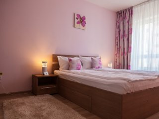 Brasov Holiday Apartments - Magenta