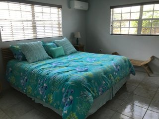 Robin's Nest Villa Aruba 3 Bedrooms with 1 Studio Apt. Walk to Palm Beach