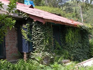 Well-appointed stay for backpackers in a homely environment
