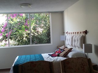Beautiful Studio in Coyoacan, near La Conchita, Mexico City