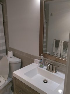 Master Bathroom fully renovated Nov 2018