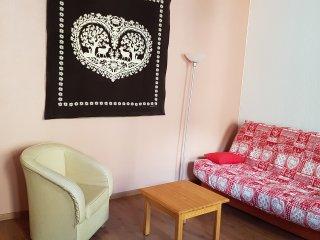 Apartamento en Cauterets para 4 personas de 42 m2 con WIFI en el centro