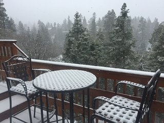 4BR Ski Slopes and Lake Views. Near Bear Mountain & Forest Trails.