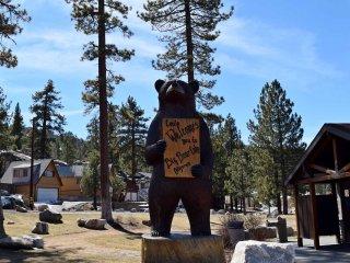 Cozy Bear Haven