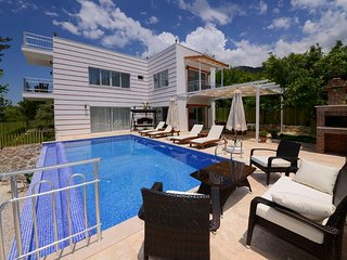 Secluded 2 Bedroom Luxury Villa with Private Swimming Pool