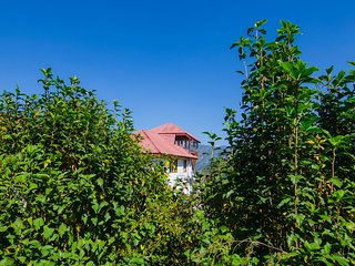 Chadha Apple Orchard Bungalow