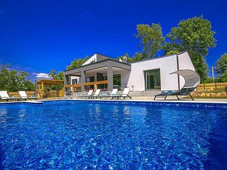 4 bedroom Villa in Nedescina, Istarska Zupanija, Croatia : ref 5426597