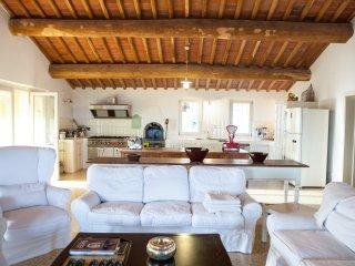 7 bedroom Villa in Mutigliano, Tuscany, Italy : ref 5399085