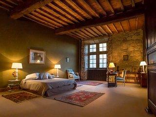 Poudenas Chateau Sleeps 24 with Pool - 5364790