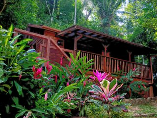 Treetops Vacation Rental in the Belize Rainforest - Christmas Special Sale !