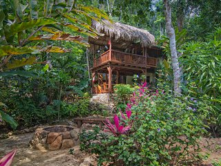 Better In Belize Eco-Lodge  - Special Christmas Sale !