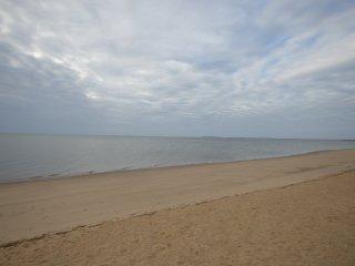 Eastham Nature Retreat - Walk to Bay Beaches