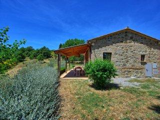 Camporsevoli Villa Sleeps 11 with Pool Air Con and WiFi - 5241907