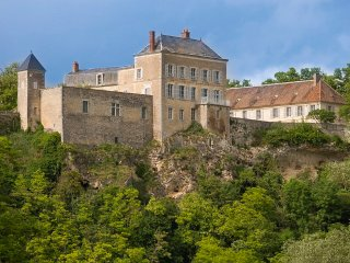 21 bedroom Chateau in Mailly-le-Chateau, Bourgogne-Franche-Comte, France : ref 5