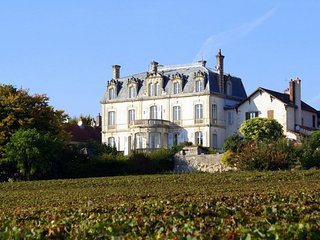 8 bedroom Chateau in Mercurey, Bourgogne-Franche-Comte, France : ref 5049848