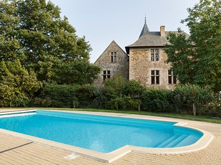17 bedroom Chateau in Thouarce, Pays de la Loire, France : ref 5049813