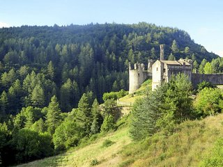 8 bedroom Chateau in Saint-Michel-de-Boulogne, Auvergne-Rhône-Alpes, France : re