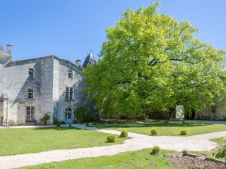 7 bedroom Chateau in Sers, Nouvelle-Aquitaine, France : ref 5049783