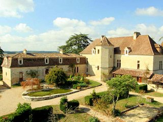 20 bedroom Chateau in Colayrac-Saint-Cirq, Nouvelle-Aquitaine, France : ref 5049