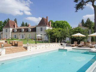 9 bedroom Chateau in Serres-et-Montguyard, Nouvelle-Aquitaine, France : ref 5049
