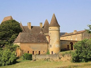 5 bedroom Chateau in La Salvagie, Nouvelle-Aquitaine, France : ref 5049611