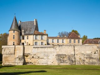 10 bedroom Chateau in Lamonzie-Montastruc, Nouvelle-Aquitaine, France : ref 5049