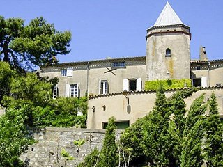 5 bedroom Chateau in Bouilhonnac, Occitania, France : ref 5049486
