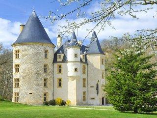 10 bedroom Chateau in Castillon-de-Saint-Martory, Occitania, France : ref