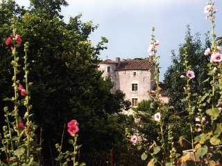 11 bedroom Chateau in Belmontet, Occitania, France : ref 5049462