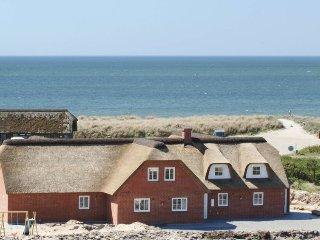 10 bedroom Villa in Blåvand, South Denmark, Denmark : ref 5040392