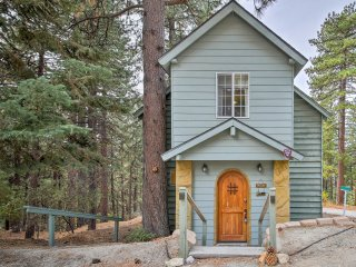 NEW! Cozy 1BR Cabin Near Snow Valley Mountain!