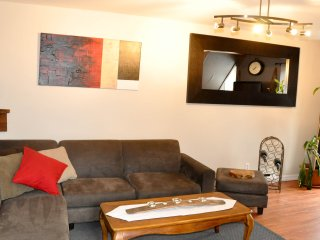 Appartement Downtown Gatineau-Hull