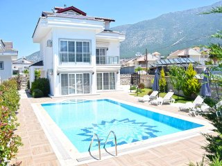 Four bedroom deluxe villa for 8 guests in Ovacik